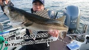 20-03-20-18-02-46-352_deco_copy_800x450