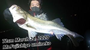 20-03-24-01-20-15-916_deco