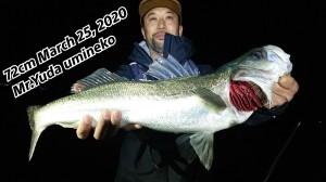 20-03-25-00-37-26-913_deco