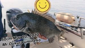 20-05-31-00-38-49-427_deco_copy_800x450