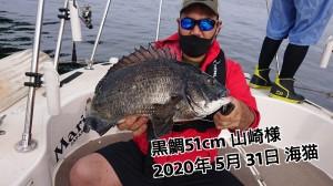 20-06-01-12-31-27-333_deco_copy_800x450