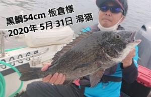 20-06-01-12-33-27-639_deco_copy_800x515