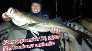 20-09-22-11-48-47-132_deco_copy_800x450