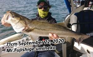 20-09-23-08-13-16-410_deco_copy_800x489