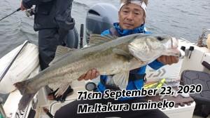 20-09-23-18-34-06-257_deco_copy_800x450