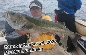 20-09-26-19-12-53-899_deco_copy_800x513