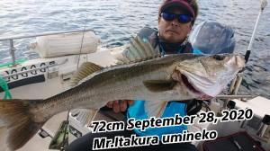 20-09-29-11-23-19-065_deco_copy_800x450
