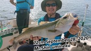 20-09-29-11-24-23-854_deco_copy_800x450