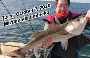 20-10-07-14-17-34-839_deco_copy_800x518