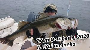 20-10-09-11-24-48-907_deco_copy_800x450