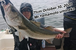 20-10-10-17-18-48-298_deco_copy_800x530