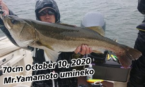 20-10-10-17-19-39-573_deco_copy_800x484