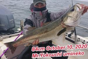 20-10-10-19-59-02-075_deco_copy_800x536