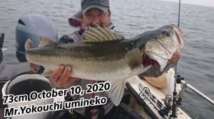20-10-10-19-59-53-698_deco_copy_800x450