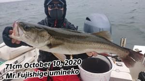20-10-10-20-02-07-138_deco_copy_800x450