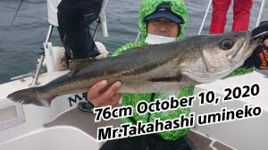 20-10-10-20-08-28-372_deco_copy_800x450