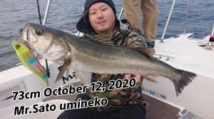 20-10-12-15-47-18-712_deco_copy_800x450