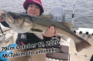 20-10-12-15-56-19-581_deco_copy_800x528_1