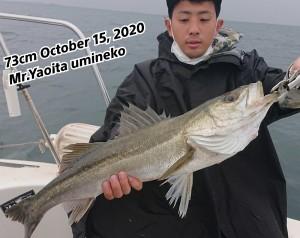20-10-15-14-01-28-611_deco_copy_800x636