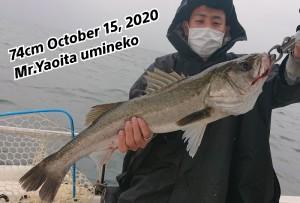 20-10-15-14-02-10-296_deco_copy_800x542