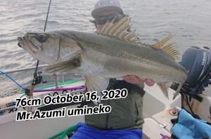 20-10-17-19-24-35-195_deco_copy_800x528