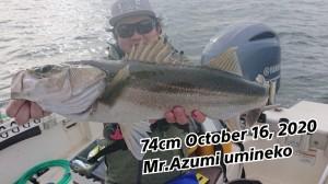 20-10-17-19-25-09-112_deco_copy_800x450