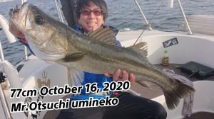20-10-17-19-26-30-566_deco_copy_800x450