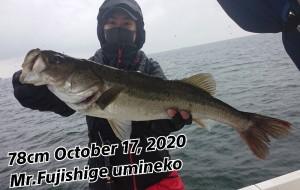 20-10-17-20-04-51-308_deco_copy_800x507