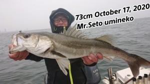 20-10-17-20-09-02-528_deco_copy_800x450
