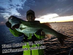 20-10-19-20-23-23-039_deco_copy_1024x768