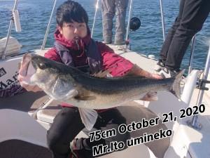 20-10-21-21-40-01-344_deco_copy_800x600