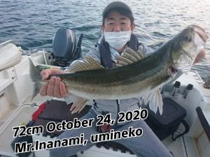 20-10-24-12-25-28-312_deco_copy_800x600