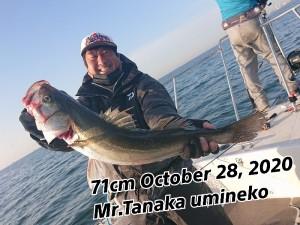 20-10-31-20-27-47-079_deco
