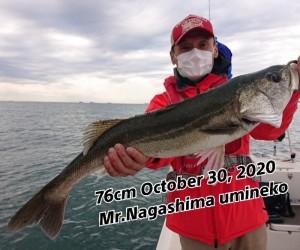 20-11-02-22-37-42-131_deco_copy_800x668