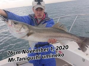 20-11-02-12-23-03-359_deco