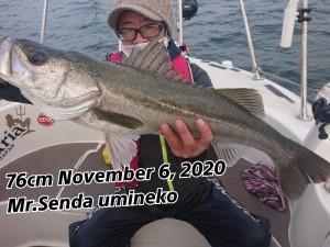 20-11-06-21-25-01-876_deco_copy_800x600