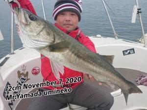 20-11-09-15-13-06-028_deco_copy_800x600