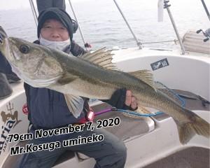 20-11-09-15-15-07-851_deco_copy_800x641