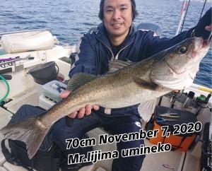 20-11-09-15-17-03-153_deco_copy_800x647