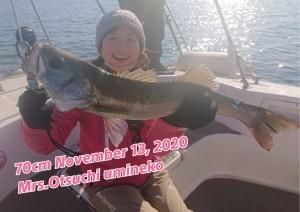 20-11-13-10-39-26-028_deco_copy_800x567