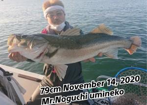 20-11-17-17-00-52-945_deco_copy_800x573