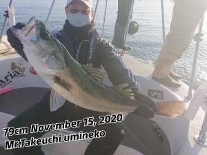 20-11-18-14-32-52-843_deco_copy_800x600