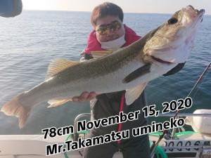 20-11-18-14-39-42-352_deco_copy_800x600
