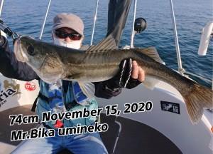20-11-19-12-07-17-403_deco_copy_800x577