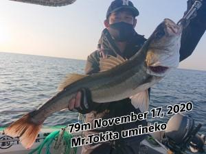 20-11-20-19-09-00-511_deco_copy_800x600