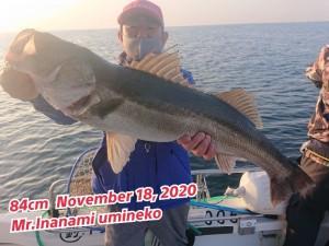 20-11-21-18-55-16-109_deco_copy_800x600