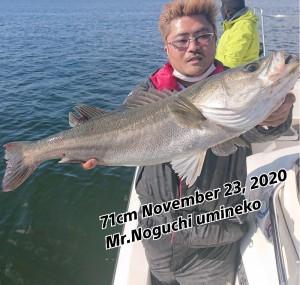 20-11-26-19-00-55-948_deco_copy_800x760