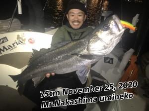 20-11-28-19-39-14-039_deco
