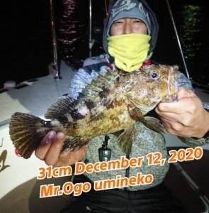 20-12-14-10-43-38-379_deco_copy_600x609