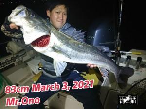 21-03-04-09-20-19-476_deco_copy_800x600